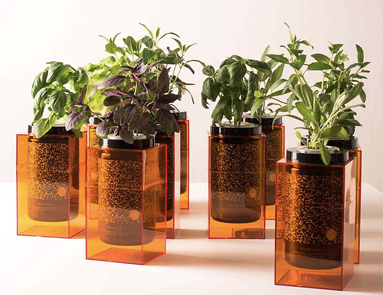 SpacePot is the World's Simplest Hydroponic Grow System at werd.com
