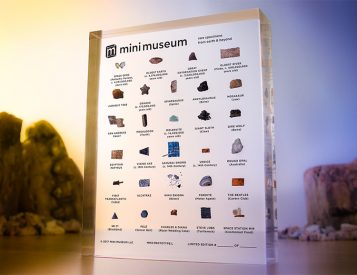 Your Mini Museum Puts Dinosaur Bones & Steve Jobs' Turtleneck On Display