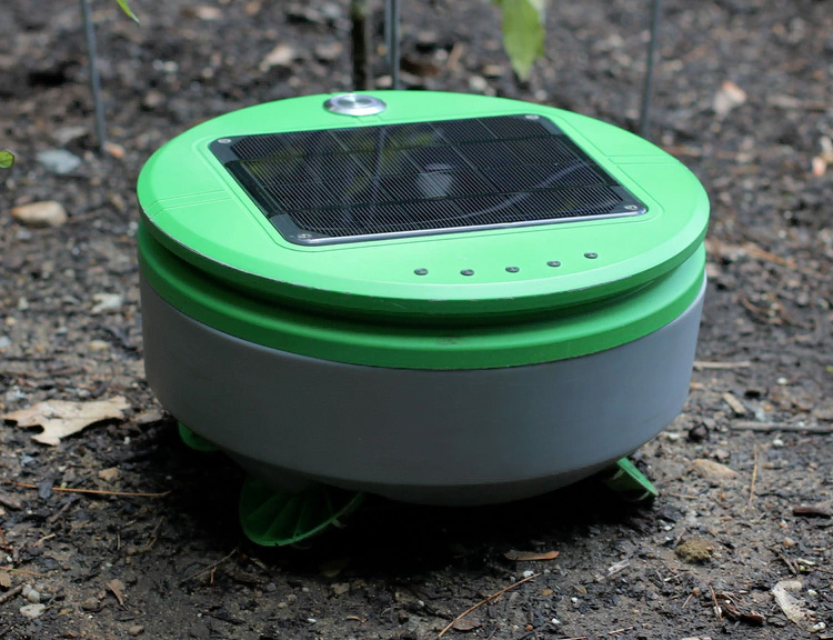 Tertill is a Solar-Powered Garden Weeding Robot at werd.com