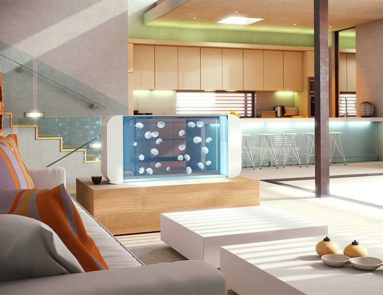 Cubic Aquariums are Modern Luxury Cribs for Jellyfish at werd.com
