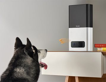 The Petcube Bites Pet Camera Will Fling Your Dog Treats, Remotely