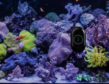 We Found a Robot that Cleans Your Aquarium