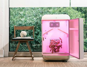 Let Seedo Grow Plants While You Do Literally Nothing