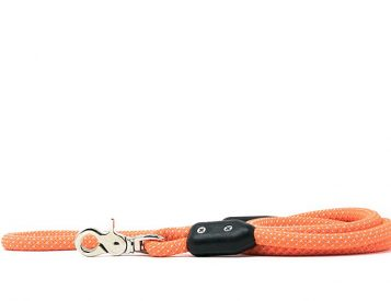 This Leash Was Designed To Last a Lifetime