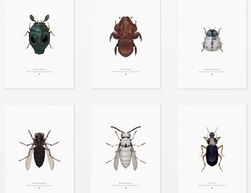 Look Closely At These <i>Star Wars</i> Insect Prints