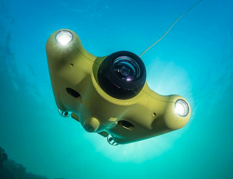 The Gladius Drone Dives Deep & Captures All The Underwater Action at werd.com