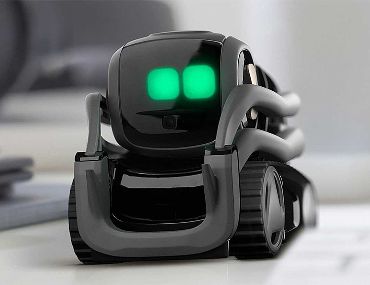 Vector is the Robot Droid of Tomorrow, Today at werd.com